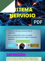 SISTEMA NERVIOSO - SEMINARIO.pptx