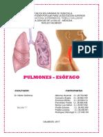 Informe Anatomia - Arye (1)