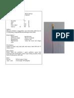 informasi obat.docx