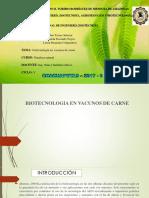 Biotecnologia en Vacunos de Carne