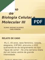 BCM III - HPV.pptx