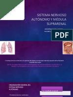 11. Sistema Nervioso Autónomo.pptx