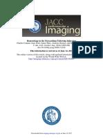 Hemorragia Miocardica Luego de Infarto JACC Img 2010