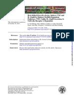 Heat-Killed Brucella Abortus Induces TNF and IL-12p40