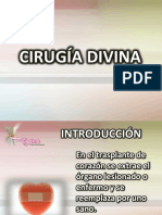 Cirugía Divina 1