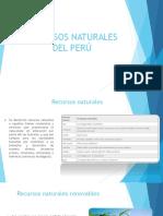 RECURSOS-NATURALES-DEL-PER__-sarita.pptx; filename_= UTF-8''RECURSOS-NATURALES-DEL-PERÚ-sarita