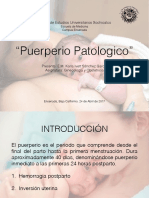 puerperiopatologicokarla-170725193001.pdf
