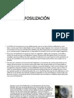 FOSILIZACIÓNEXPO.pptx