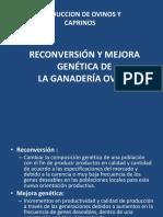 Reconversión y Mejora Genética