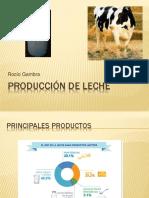 Produccción de Leche
