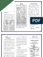 73430429-Triptico-de-Psicolinguistica.docx