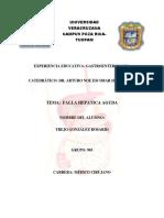 Falla Hepatica Aguda Trejo Gonzalez Rosario