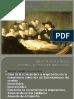 Tanatologia Completa