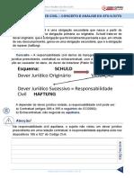 resumo_1947690-raquel-bueno_30837150-direito-civil-juris-2015-aula-112-responsabilidades-civil-conceito-e-analise-do-ato-ilicito.pdf