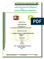 Informe de Agroforesteria