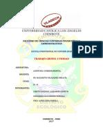 Plan de Trabajo y Programa de Auditoría