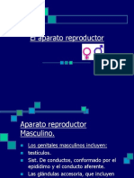 aparato reproductor.ppt
