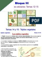 TEMA 14y15 Tejidos Vegetales