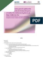 BCS_MA22_protocolos_violencia_2012 perspectivs de genero.pdf