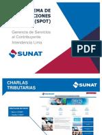 Sistema_de_Detracciones_28-04-16.pptx