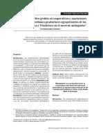 Articulo de Investigacion -2_gestionasociacionesproductivas (1)