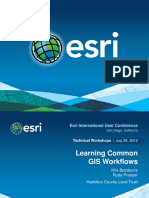 Learning Common GIS Workflows