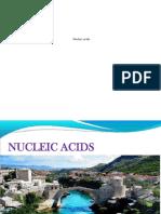 Nuclei Acids