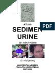62252592-Atlas-Sedimen-Urine.pdf