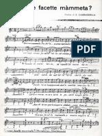 COMME_FACETTE_MAMMETA_(Solm).pdf