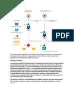 farmaco receptores colinergi