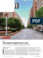 SCIENCE Natural Capital of City Trees