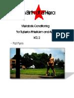 Birth of a Hero - Pat Flynn.pdf