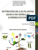 Nutrición de Las Plantas Yeison Pacheco