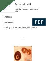 Kuliah 6. Protozoa