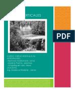 CAIDA VERTICAL.docx