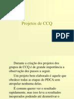 CCQ PDCA