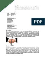 El currículum (Def+Graf)