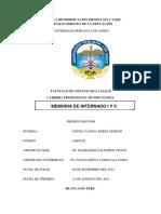 291739207-MEMORIA-DE-INTERNADO-y-PSICOLOGIA.docx