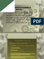 amortiguadores o buffers del organismo-2.pptx