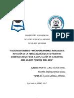 Factores de Riesgo y Microorganismos Asociados a Infeccion de Herida Quirurgica en Pacientes Diabeticos Sometidos a Amputacion. Hagp%2c 2016. Final