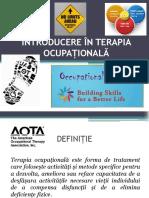 Introducere in Terapia Ocupationala