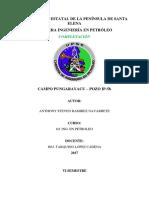 Informe Pozo