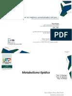 Clase 13 -Metabolismo Lipídico