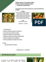 UNIVERSIDAD TECNICA LUIS VARGAS TORRES.pptx