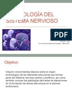embrio SNC 2017
