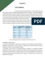 RESUMENPARTOYLACTANCIA.ETMP152.2017
