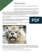 ARTÍCULOS INTERESANTES mutaciones animales2014315-2328 (1).docx