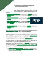 Modelo de Constitución Para Una Sociedad Comercial de Responsabilidad Limitada s.r.l.