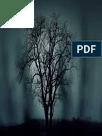 Nature Night Dark Tree
