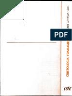 CRISTOLOGIA FUNDAMENTAL- Jose Antonio Sayes.pdf